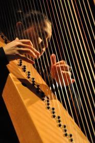 Terra-Harpe